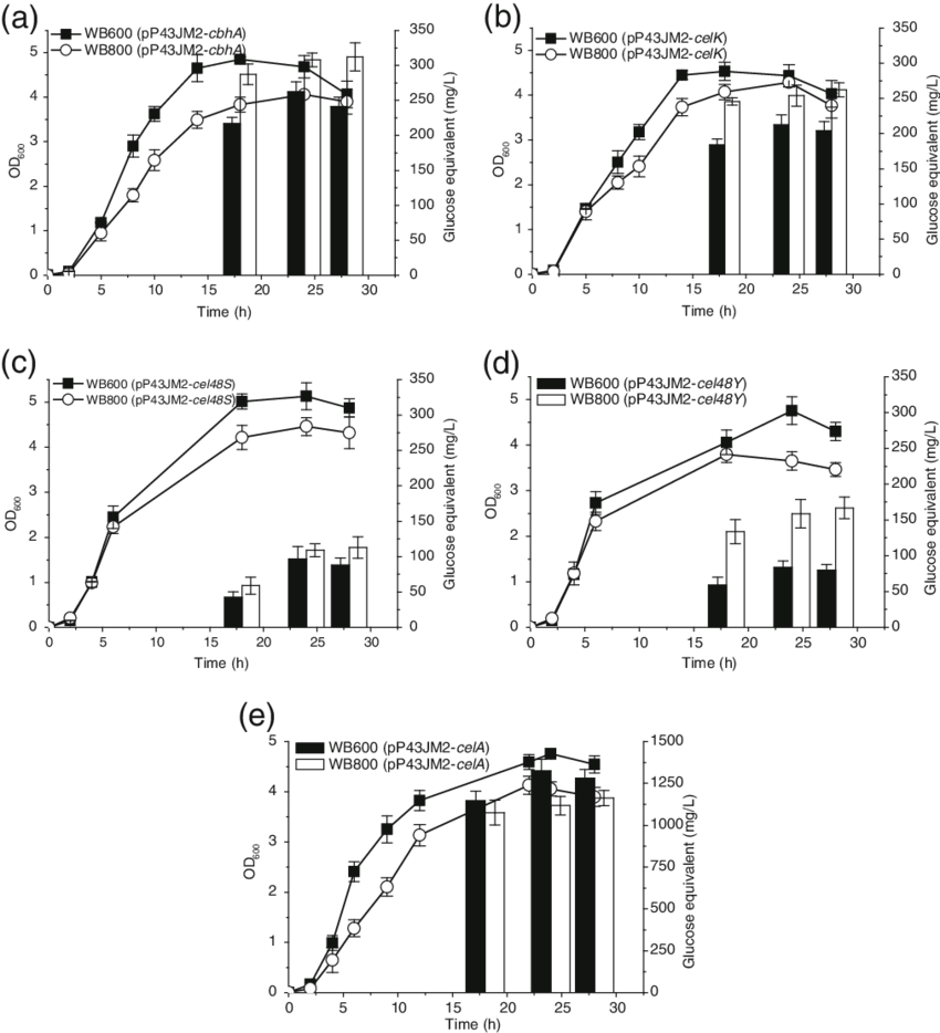 image transparent library Growth and enzymatic activities of the recombinant B