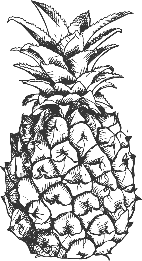 vector freeuse cocktail drawing pineapple #92536101