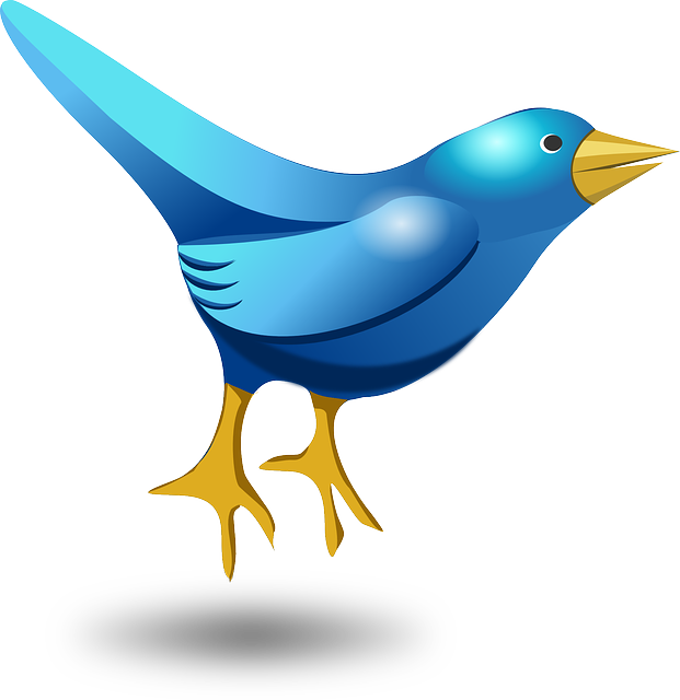 picture Free photo gathering group. Cocktails clipart blue bird