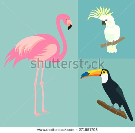 graphic library library Cocktails clipart blue bird. Flamingo stock vectors vector