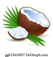 png free Coconut clipart. Clip art royalty free