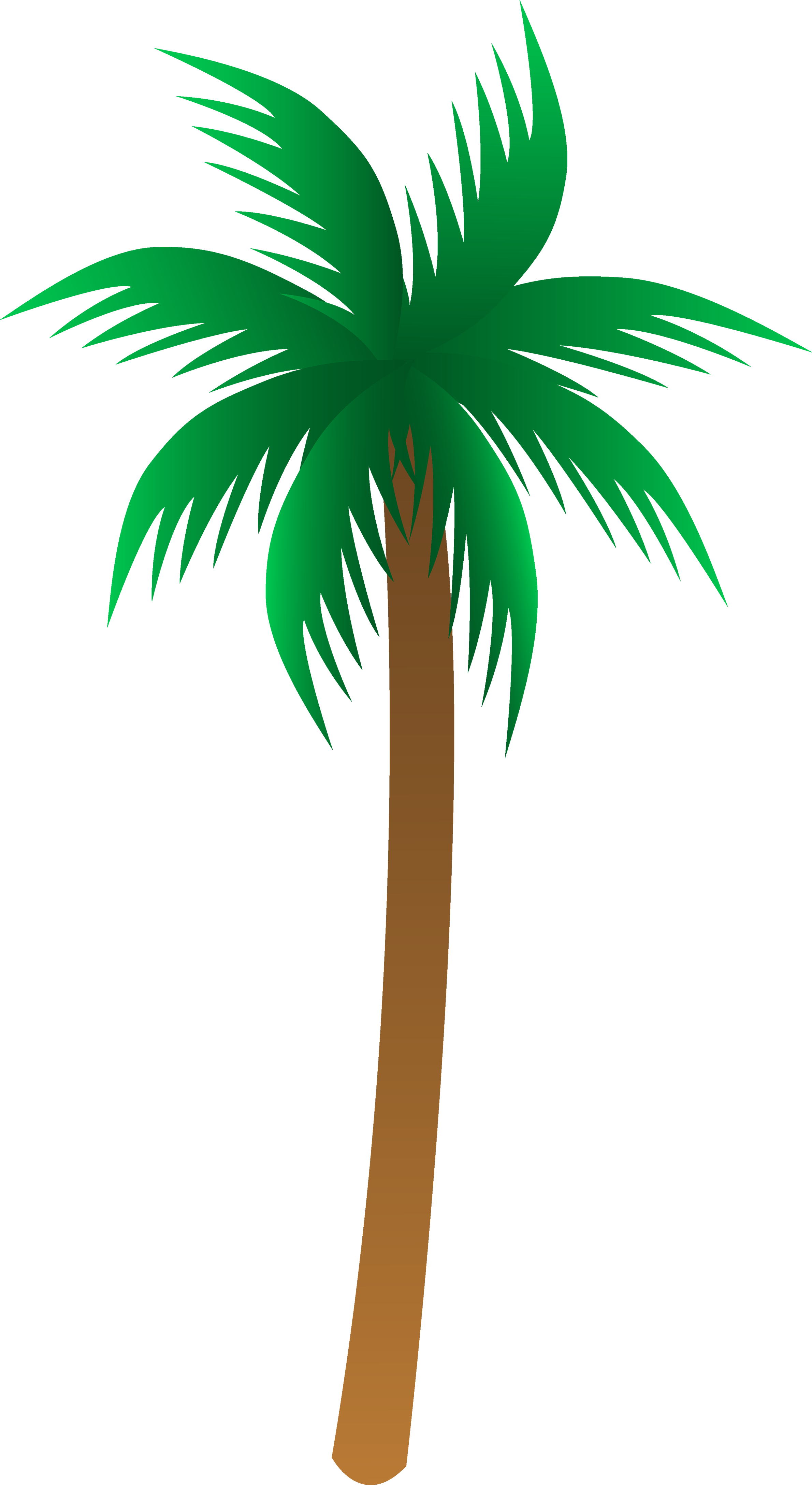 picture freeuse download Palm tree PNG images