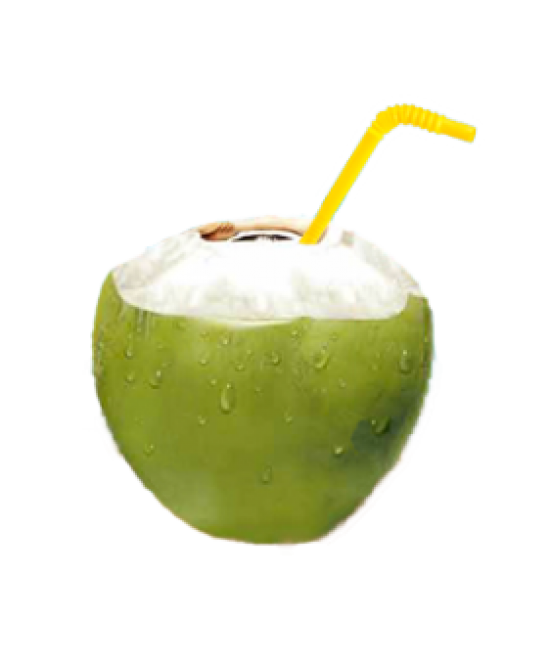 clipart freeuse stock transparent coconut fresh green #105445578