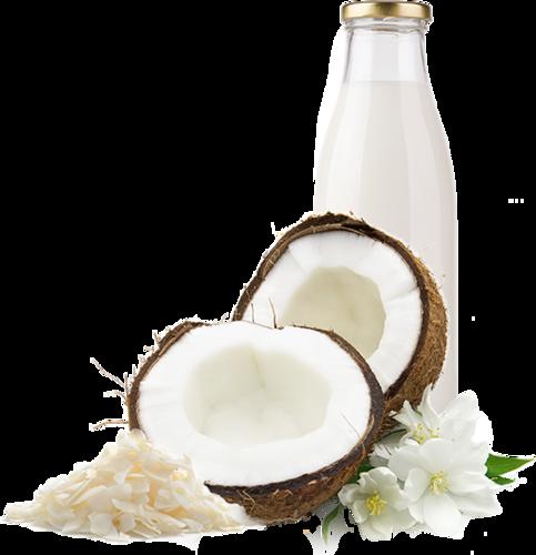 clip art transparent stock transparent coconut milk png #105445958