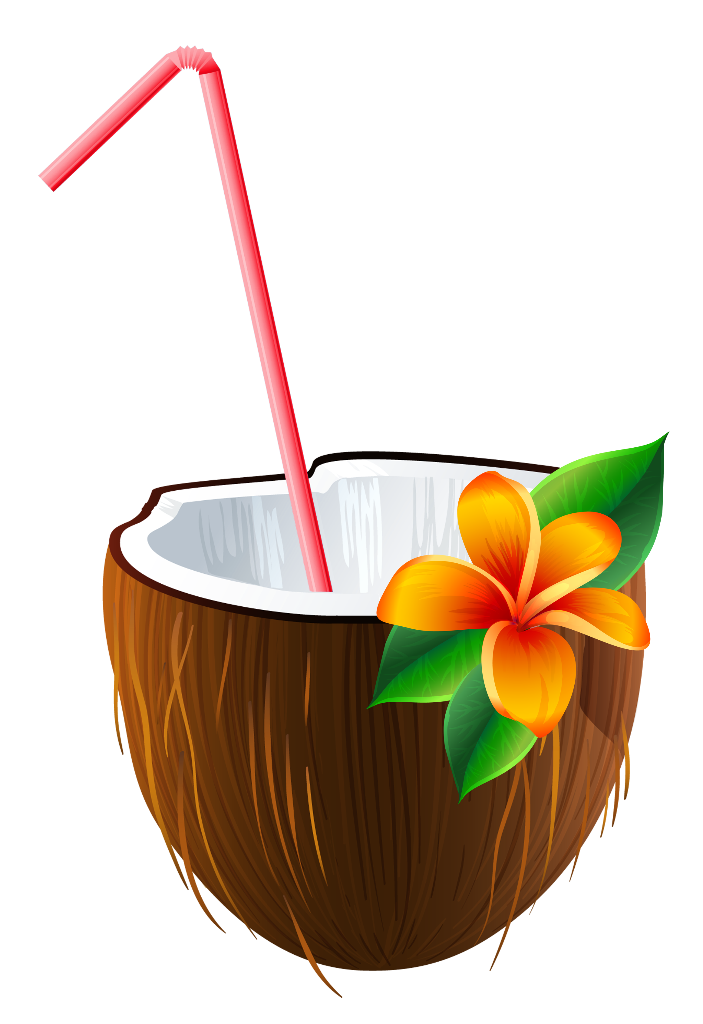 graphic Exotic Coconut Cocktail PNG Clipart Image