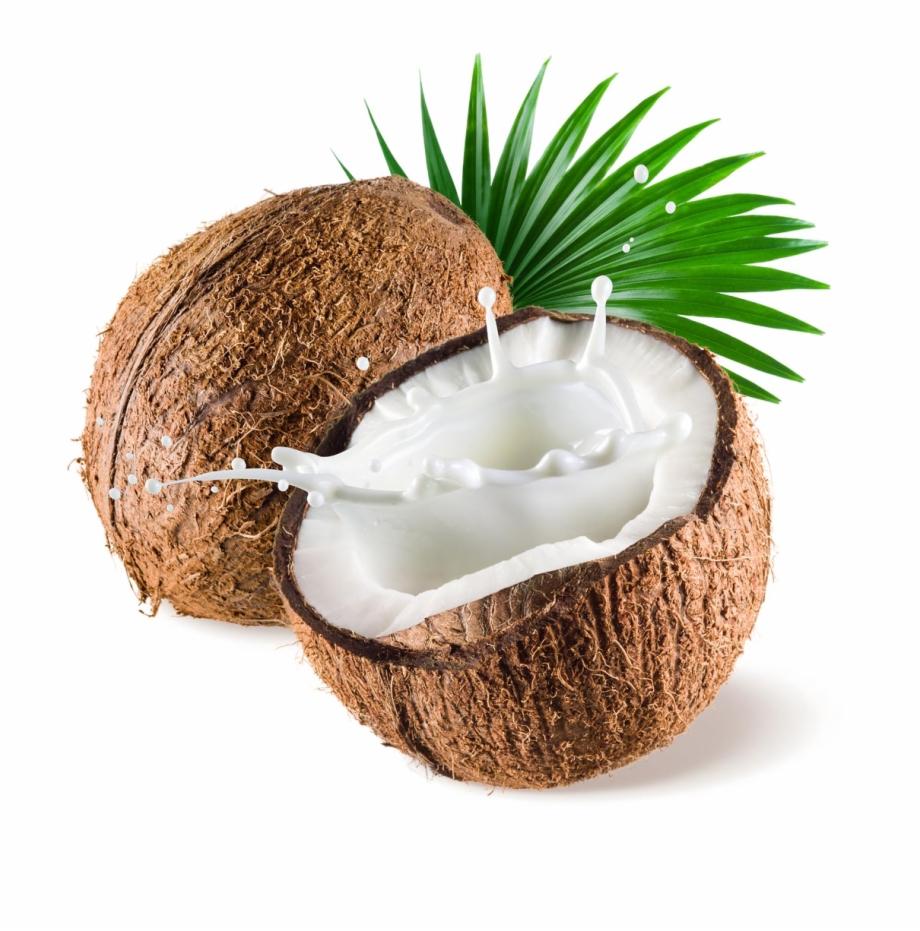 graphic download Transparent coconut. Png image background .