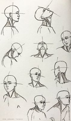 picture library library  best images anatomy. Drawing necks neck line