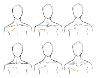 banner black and white stock How to draw neck. Drawing necks collar bone