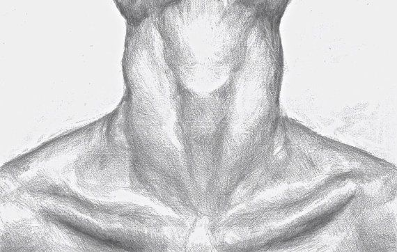 graphic royalty free Drawing necks collar bone. Pencil by hammersandthreads on