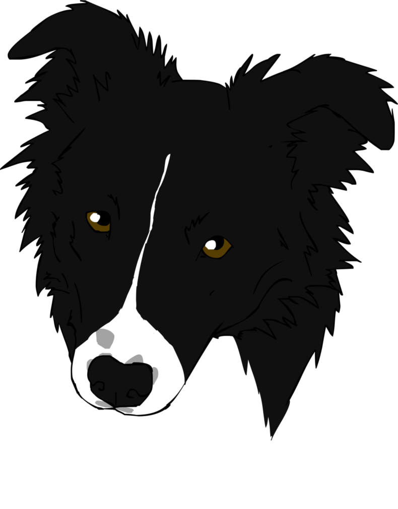 vector stock Border Collie Graphics