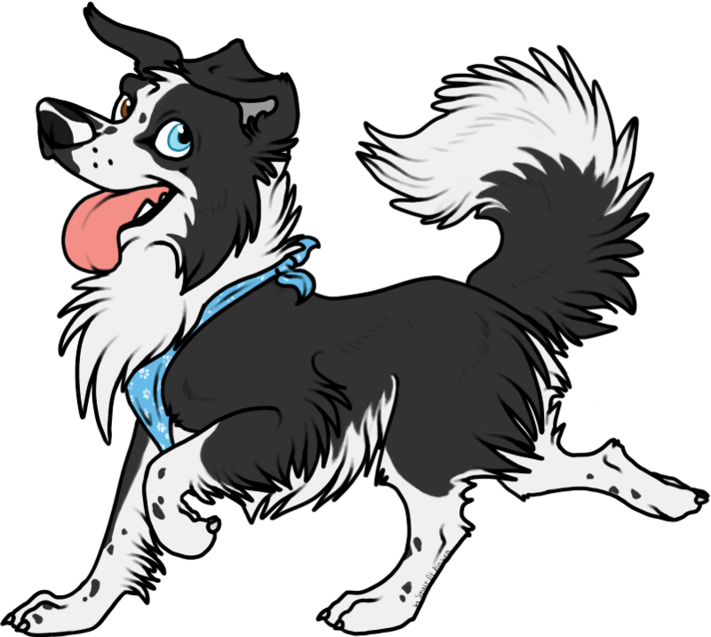 clip free download collie drawing drawn #110905320