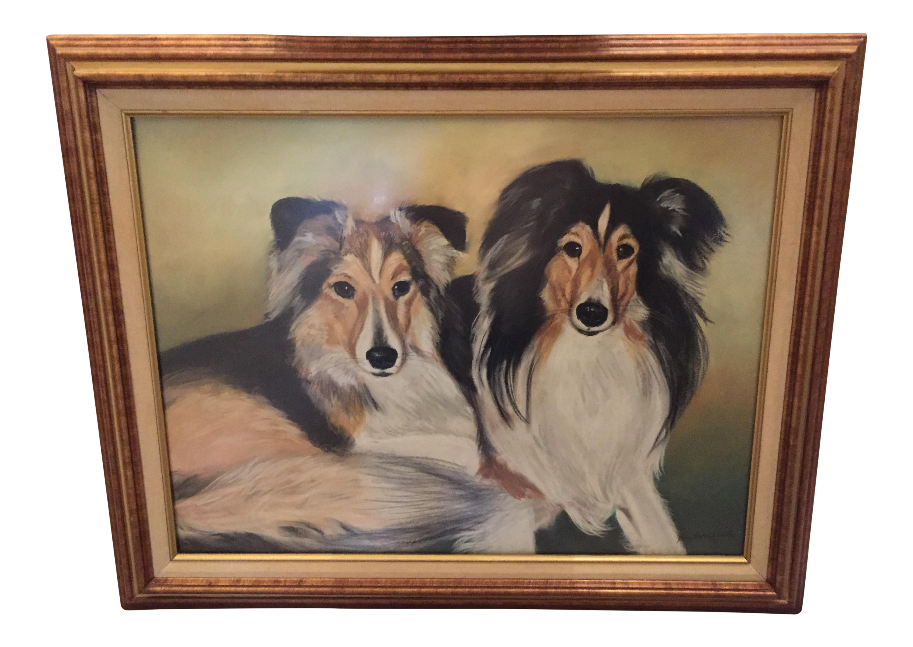 stock collie drawing pastel #110905230