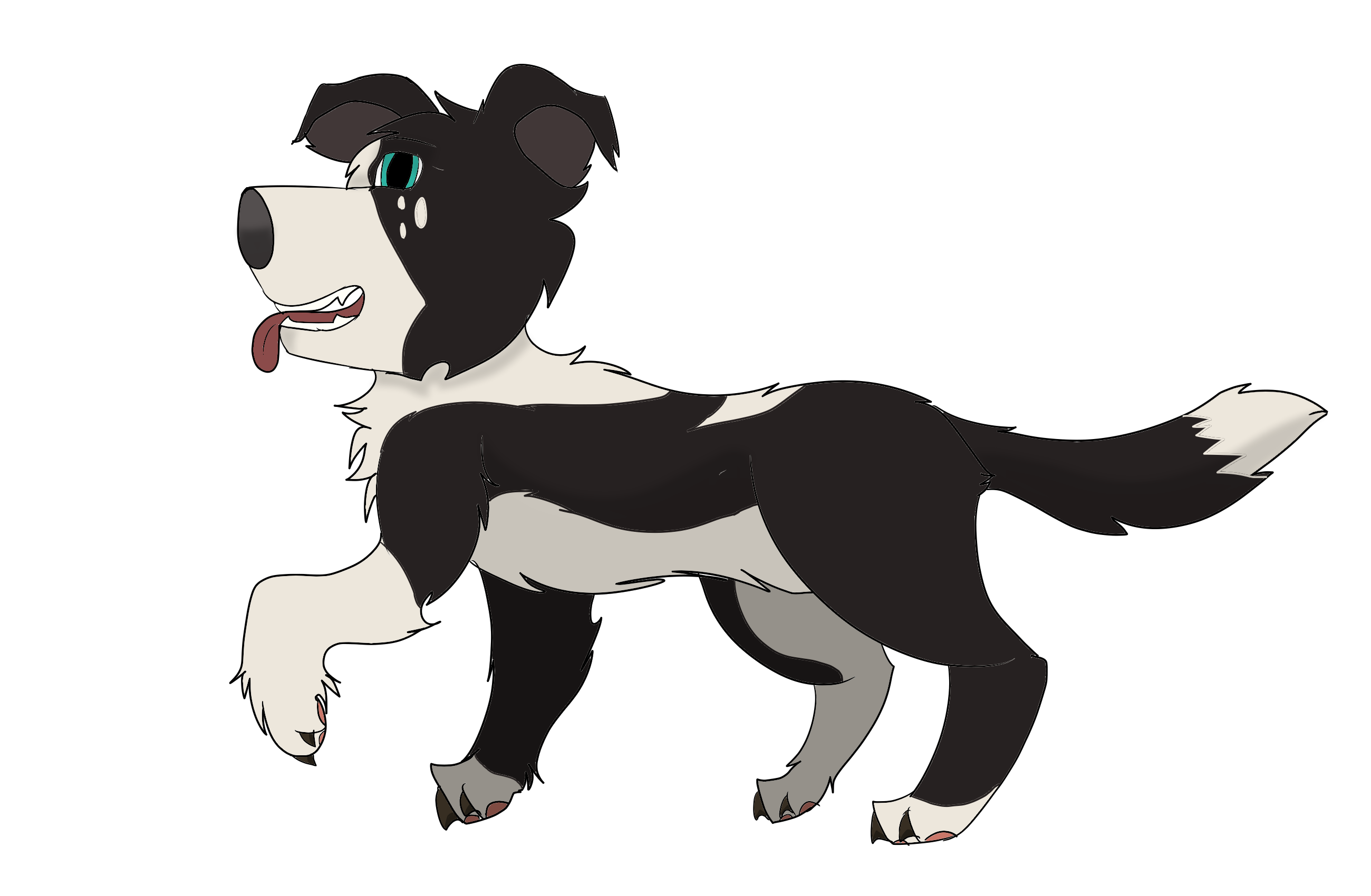 clipart free Black and white Border collie by Spiritwolf