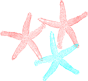 picture black and white Color clipart turquoise. Starfish clip art coral