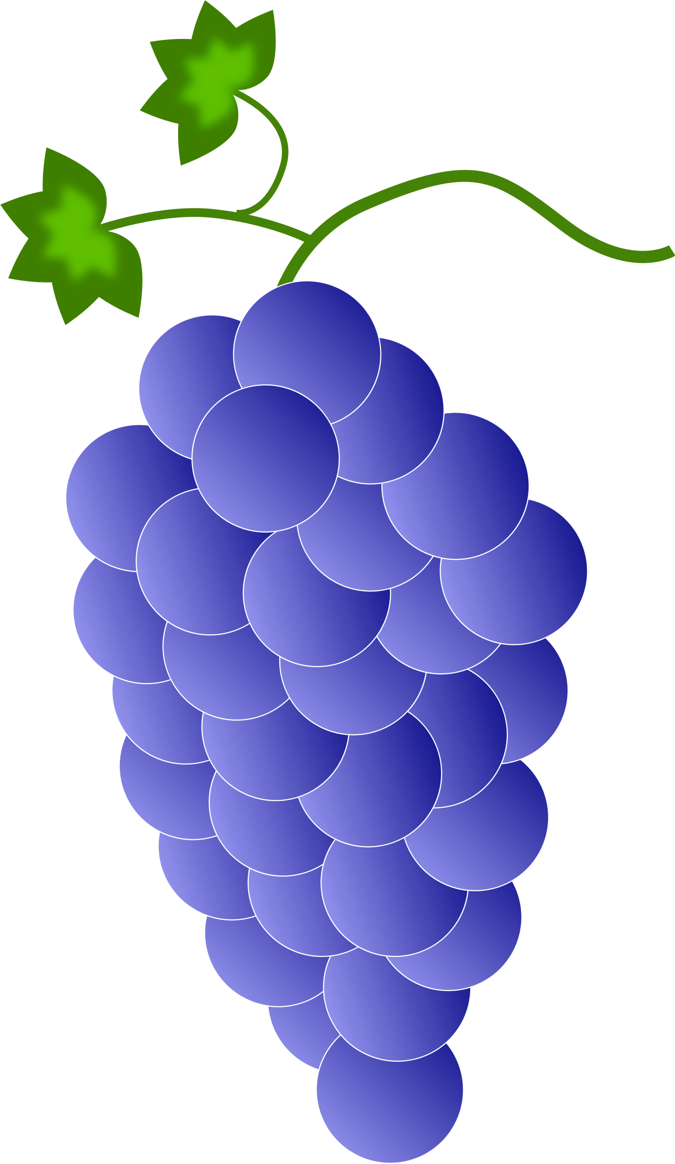 svg royalty free stock Grapes violet blue big. Colored clipart