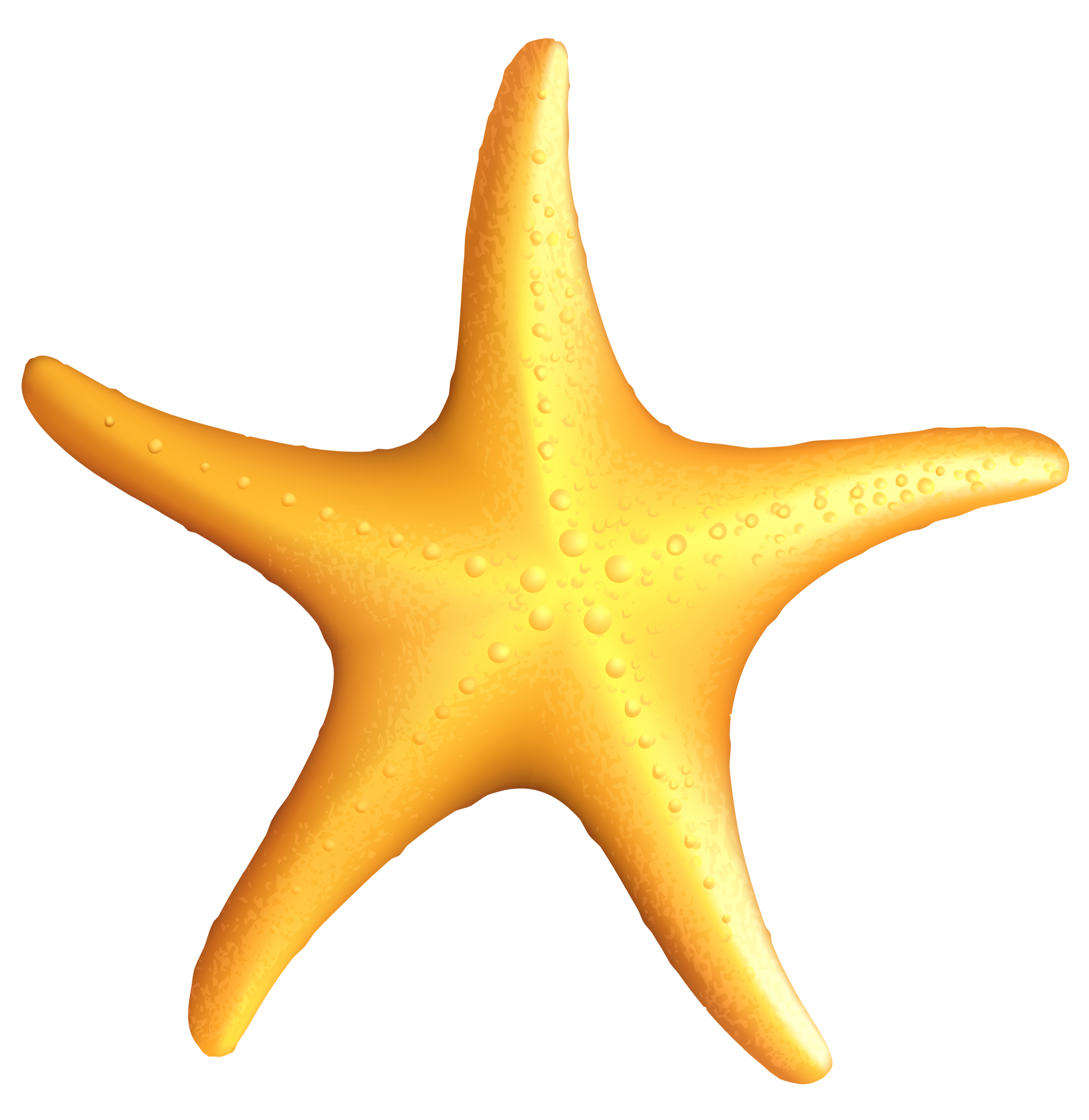 jpg black and white stock Beach transparent starfish. Clipart pencil and in
