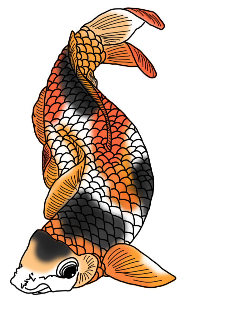 svg royalty free stock Koi fish drawings with. Colorful drawing animal