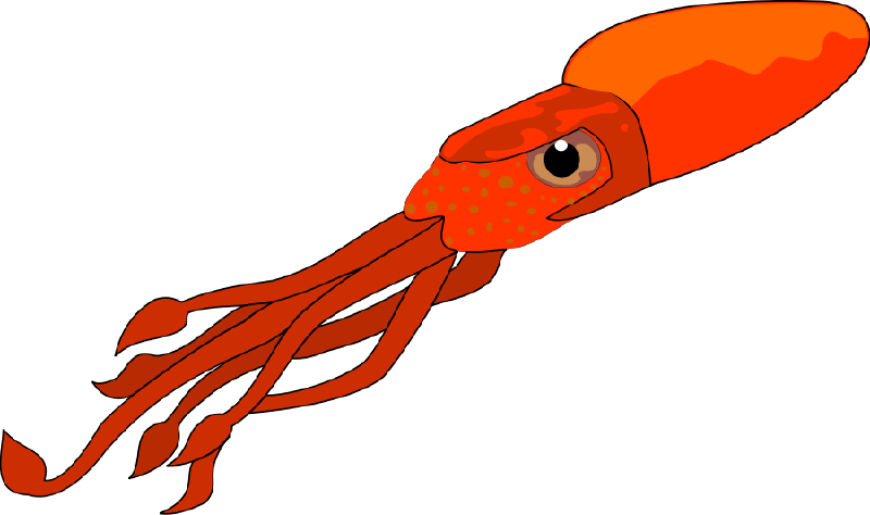 vector freeuse download The top best blogs. Cute clipart squid