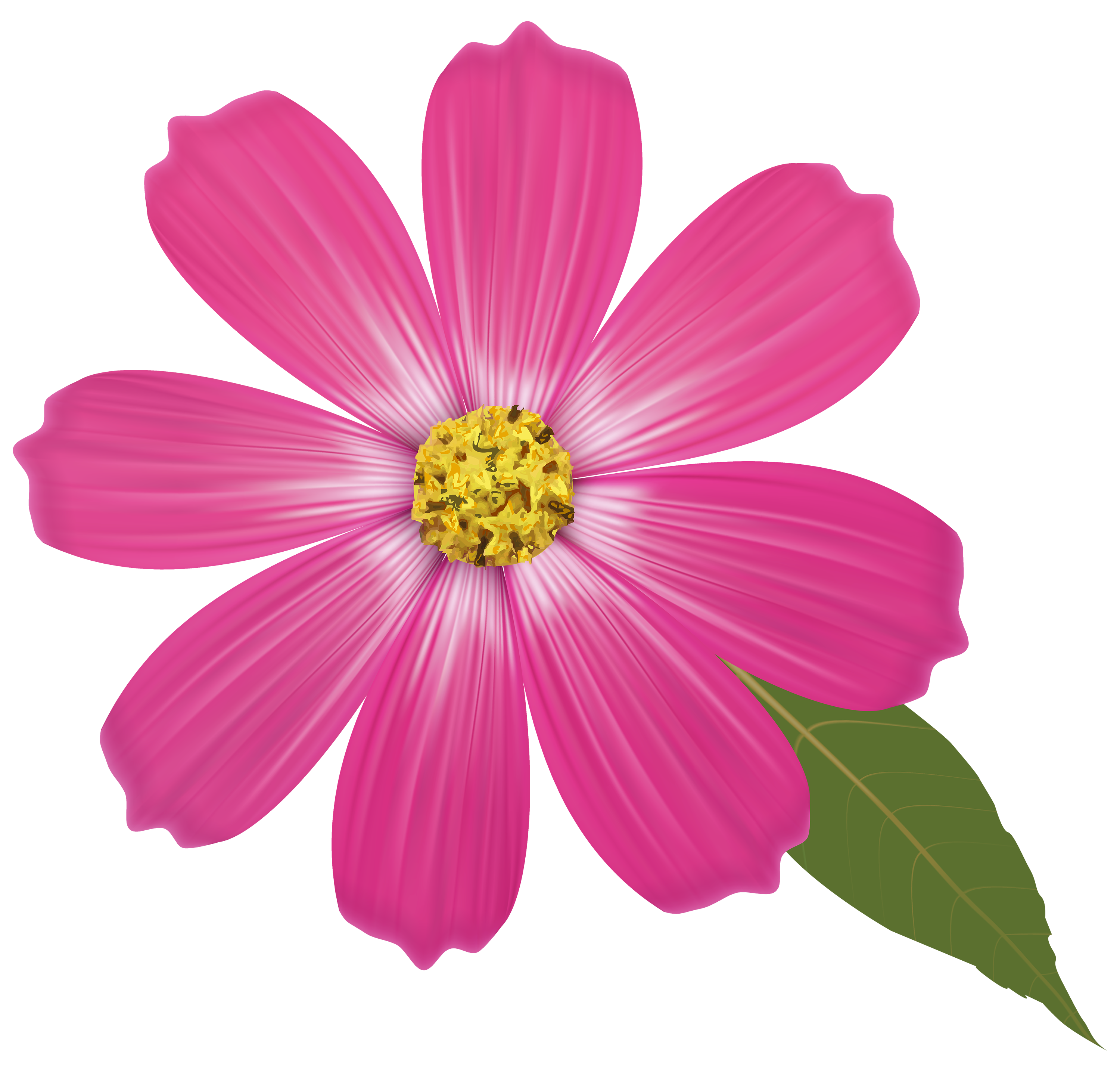 vector free library Pink flower png best. Flowers clipart name