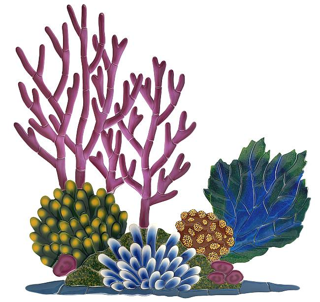 clip free Free reef cliparts download. Coral clipart