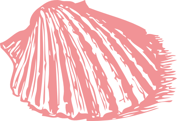 graphic Pink sea shell clip. Coral clipart aquaculture