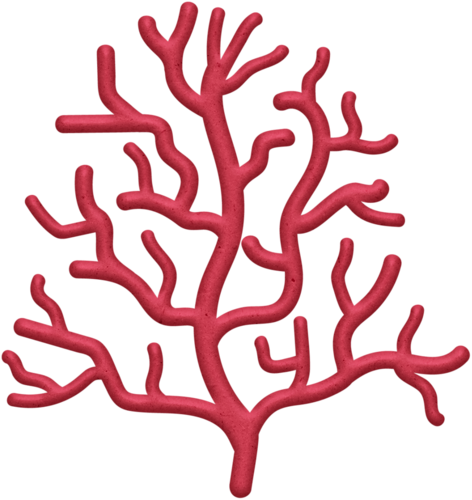 png transparent library Coral clipart underwate coral. Under the sea pinterest
