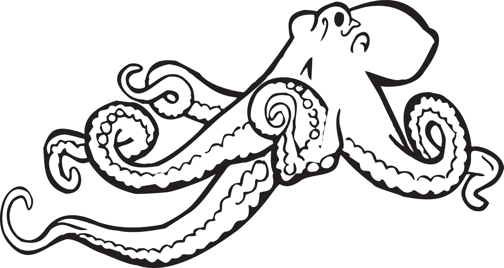 jpg royalty free download Cool black and white. Drawing octopus easy