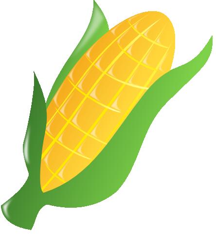 vector transparent . Corn clipart
