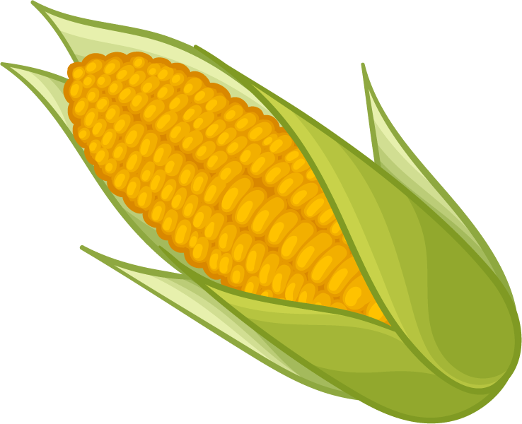 image free library Transparent free images only. Corn clipart.
