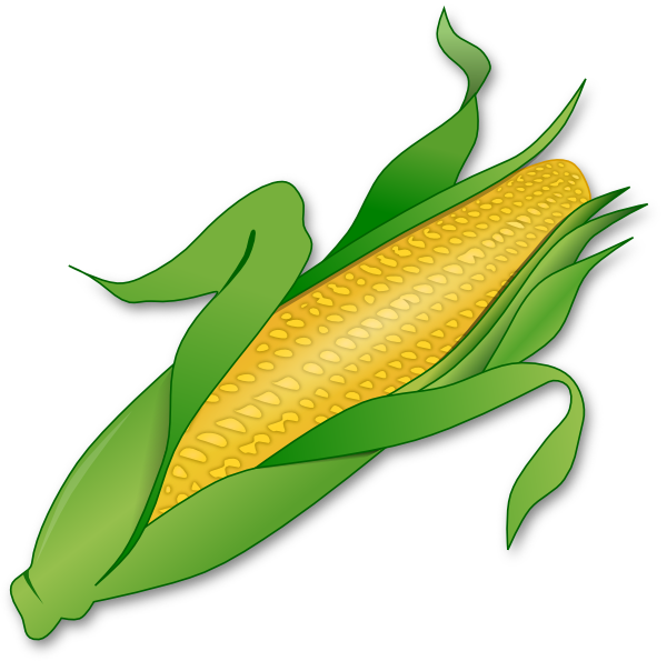 clipart royalty free stock Clip art vector online. Corn clipart.