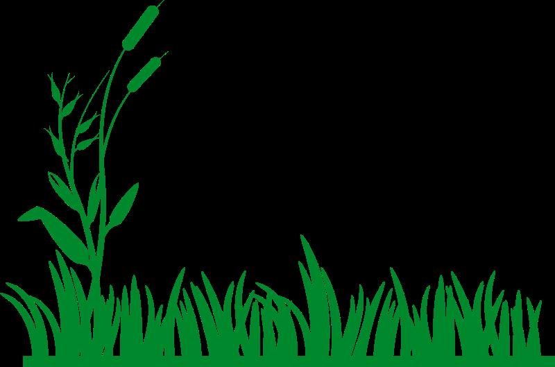 jpg Corn Field Clipart at GetDrawings