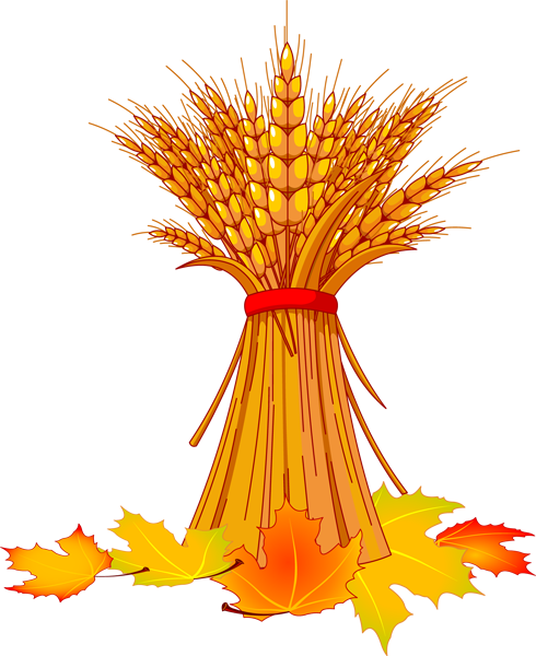 jpg freeuse Wheat stalk clipart. And fall leaves pinterest