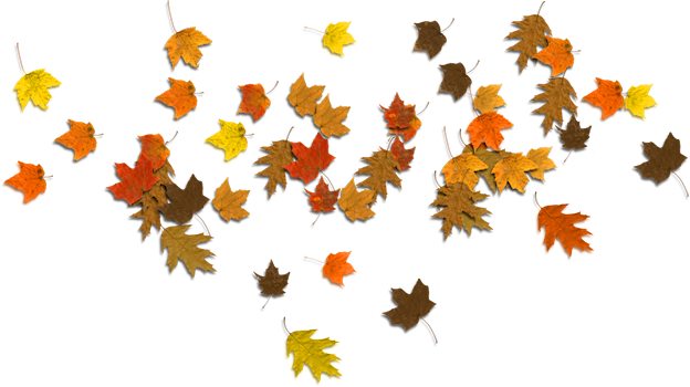 clipart library download Acorn border clipart. Autumn leaves corner free