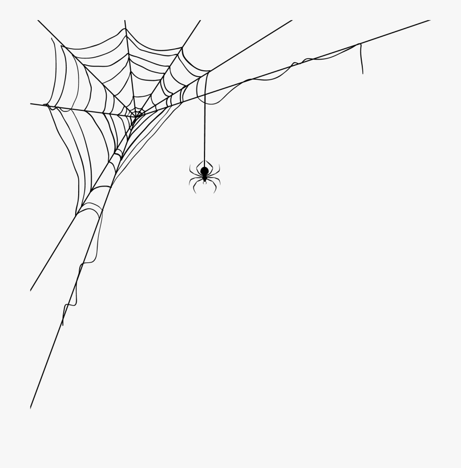 banner transparent library Corner spider web clipart. Transparent background free