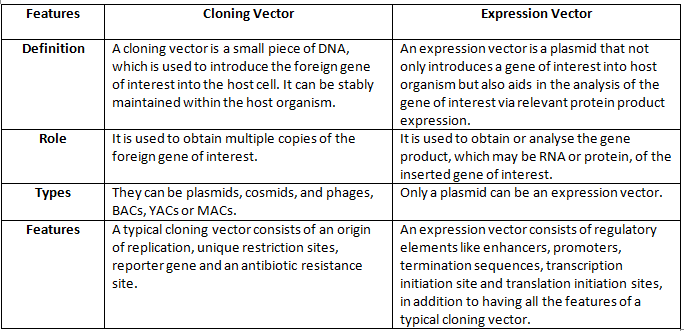 picture transparent library Difference Between a Cloning Vector and an Expression Vector