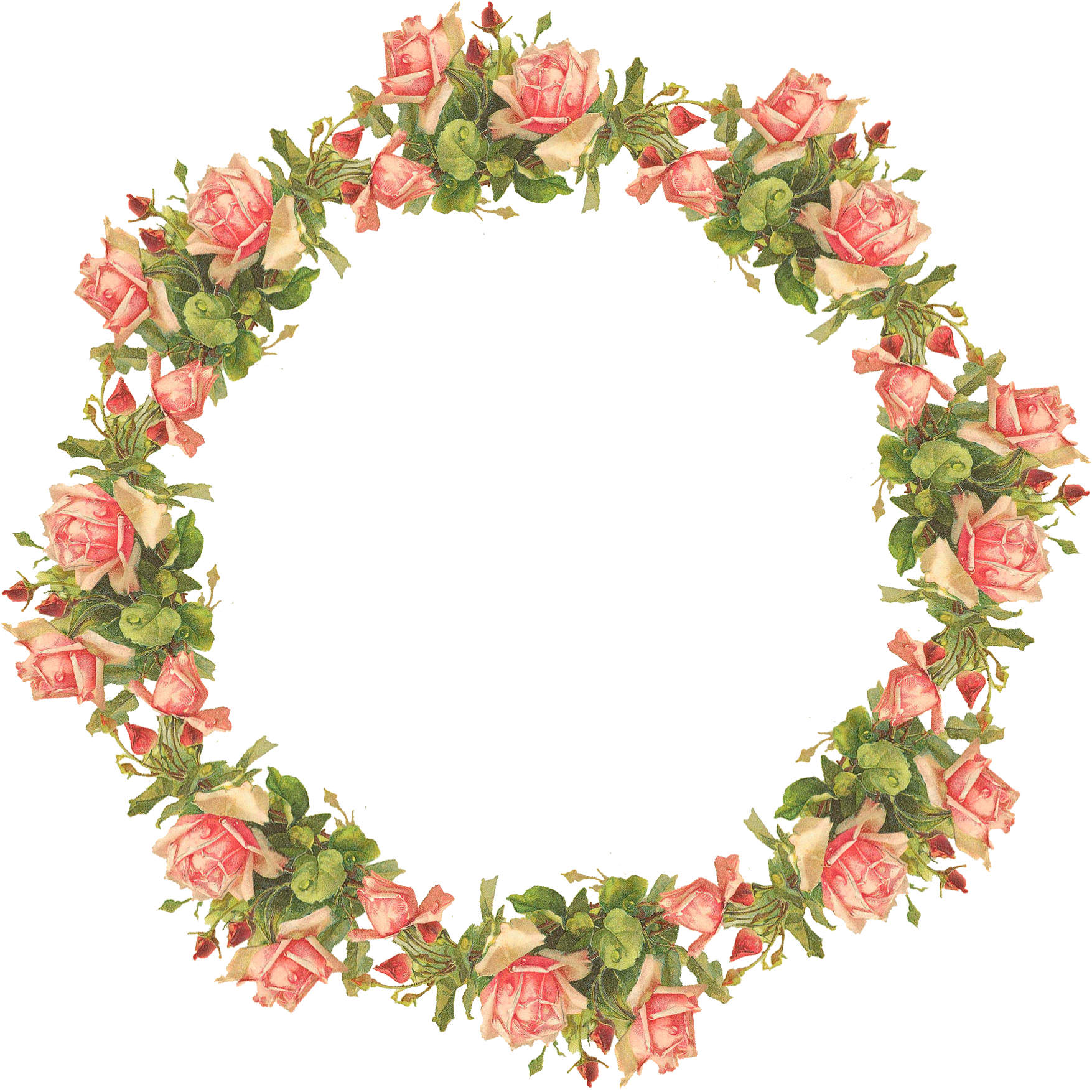 image library Pin by noha madani. Cotton wreath clipart