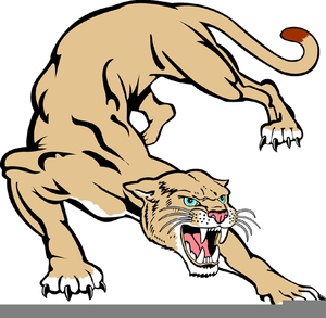 clipart free library Free pictures images at. Cougar clipart