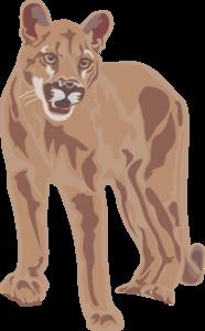banner stock Art clip at clker. Cougar clipart
