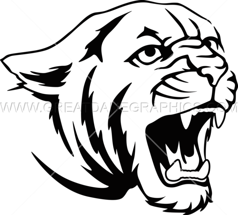 png black and white download Cougar Head Drawing at GetDrawings