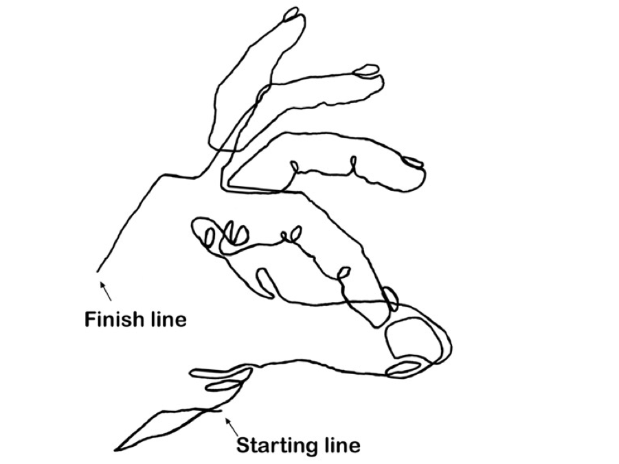 free download Countour drawing beginner. Collection of free contour