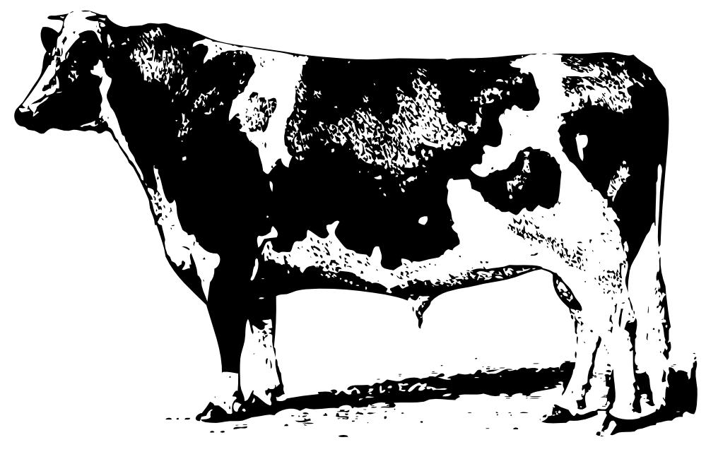 banner black and white download Cow clipart black and white. Clipartist net clip art