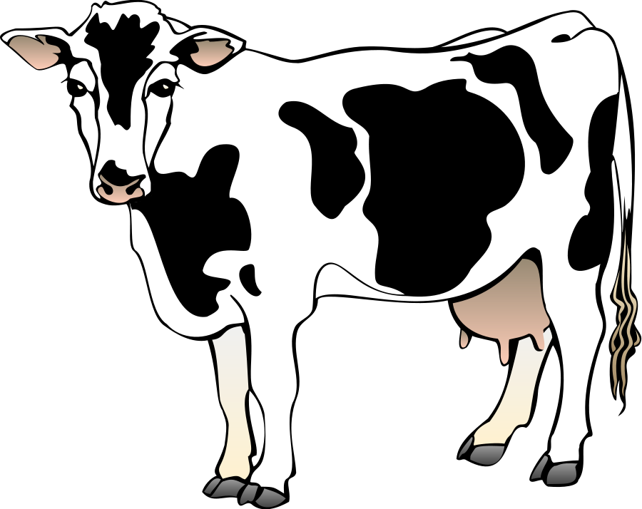 graphic freeuse stock cows clipart