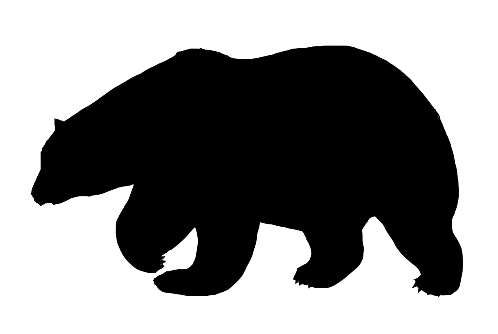 picture black and white Polar bear bears pinterest. Grizzly clipart cabin