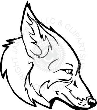 vector library stock Cool coyote head