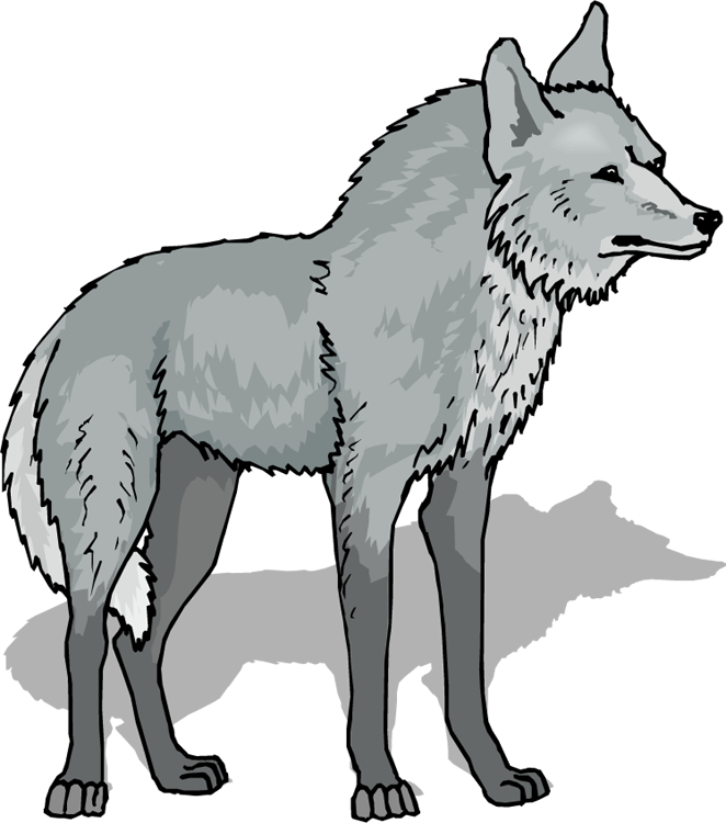 svg Coyote clipart sad. Wolf transparent free for