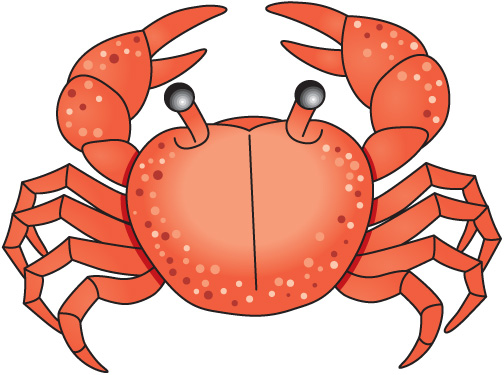 clip free library Free cliparts download clip. Crab clipart