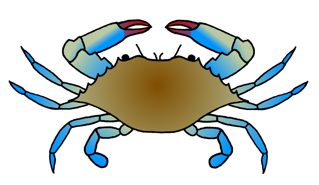 clipart royalty free library Blue Crab Drawing at GetDrawings