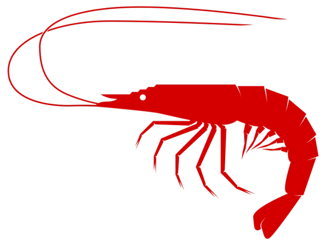 clipart black and white Shrimp sea food free. Crawfish clipart chef hat
