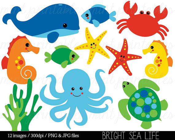 picture transparent library Sea under the baby. Underwater animal clipart