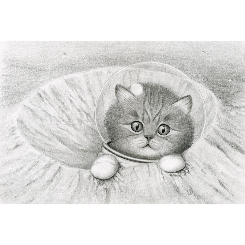 image download Cat print daniel cortopassi. Crater drawing.